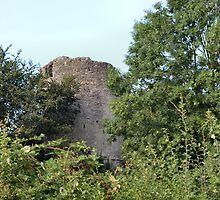 Bronllys Castle by missmoneypenny