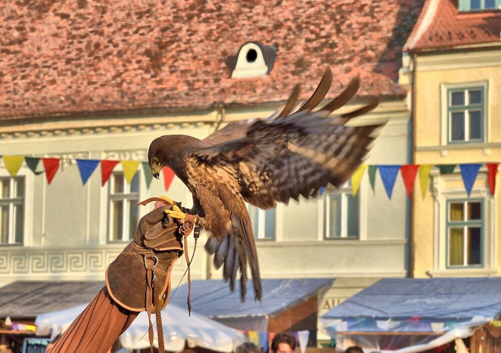 Falcon Landing on Falconer's Gauntlet by ivDAnu
