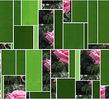 Pink Roses in Anzures 6 Art Rectangles 12 by Christopher Johnson