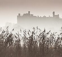Arundel Castle Shrouded in Mist II by Chester Tugwell