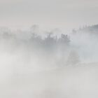 Folly in Arundel Park in Mist by Chester Tugwell