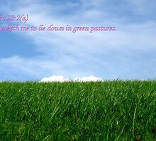 He Maketh Me Lie Down in Green Pastures by aprilann