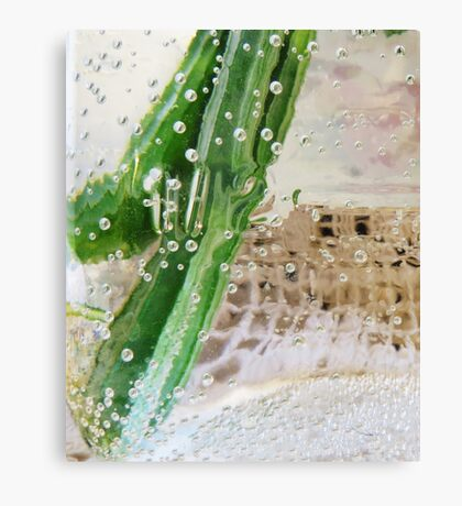 Effervescent  Canvas Print