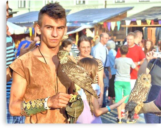 Falcon and Falconer  by ivDAnu