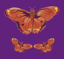 Orange and purple butterfly by Izzy83