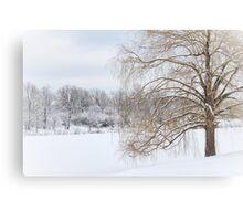 Winter Willow Tree Canvas Print