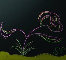 Purple Flower by Sotiris Filippou