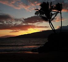 Sunset in Maui by picsbytabitha
