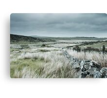 Washed Out Moors Canvas Print