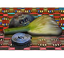 Fennel, Licorice and Primate Photographic Print