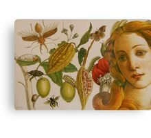 In The Garden of Life Canvas Print