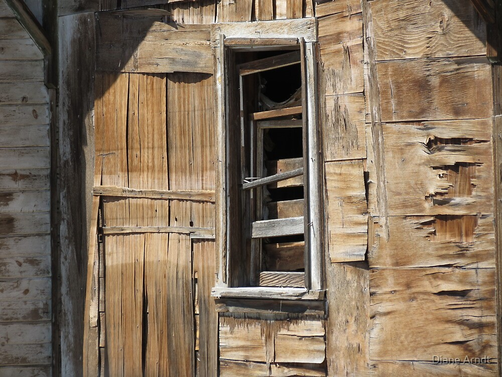 All Boarded Up by Diane Arndt