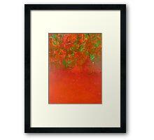 orange peel Framed Print