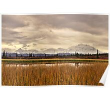 Denali Above the Reeds Poster