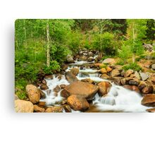 The babbling brook... Canvas Print