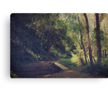 And Yet So Far Canvas Print