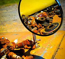 Rust Reflected by Fran Hogan