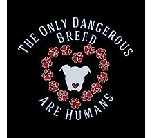 Dog Lovers Slogan - The Only Dangerous Breed Are Humans Photographic Print