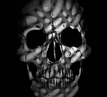 chiseled skull  by tinncity