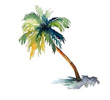 Watercolor palm tree Photographic Print