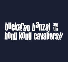 Buckaroo Banzai & the Hong Kong Cavaliers by MastoDonald
