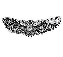 Dreamcatcher Owl by KristinaJoy