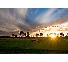 Evening light ~ Stockinbingal NSW Photographic Print
