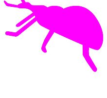 Pink Beetle Silhouette by kwg2200