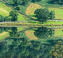 Reflections In Rydal Water by Jamie  Green