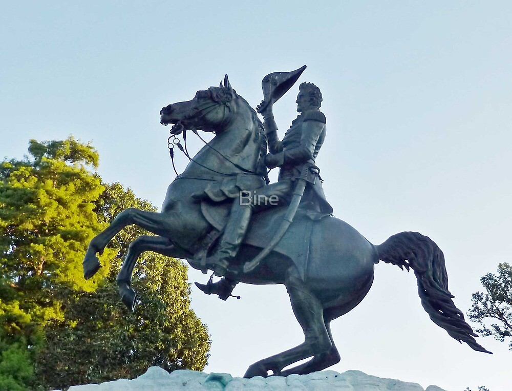 Andrew Jackson at the Battle of New Orleans by Bine