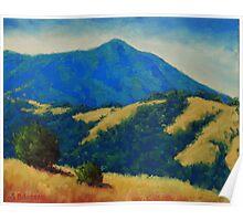 Tamalpais With Golden Hills Poster