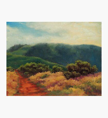 Fog Over Barnabe Mountain Photographic Print