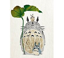 totoro and cie! Photographic Print