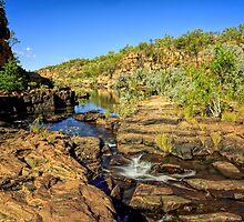 Manning Gorge  by Pene Stevens