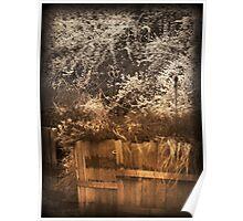 Sepia Barrels rustic black and white and sepia tones Poster