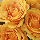 Bouquet of Yellow Roses by rhamm