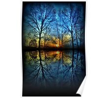 Sunset Reflection abstract trees reflected blue yellow orange Poster