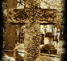 Vine on Cross Sculpture gothic cemetery photography by jemvistaprint