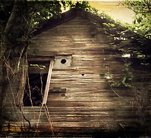Vintage Barn No. 3 rustic rural decay photography by jemvistaprint