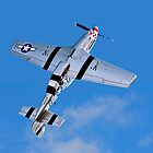 """P-51D Mustang 44-13521/5Q-B G-MRLL """"Marinell"""" Looping by Colin Smedley"""