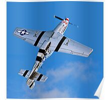 "P-51D Mustang 44-13521/5Q-B G-MRLL ""Marinell"" Looping Poster"