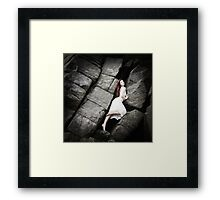 Sophie's Rocky Escape Framed Print