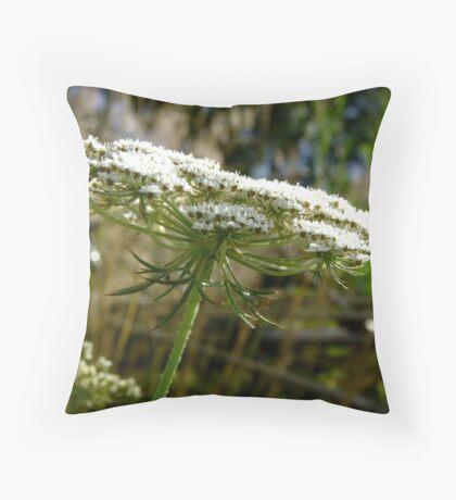 Queen Anne's Lace ~ Daucus carota Throw Pillow
