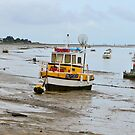 Port des Barques, Charente Maritime, France, atlantic coast by 7horses
