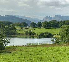 Loughrigg Tarn and Langdale Pikes by VoluntaryRanger