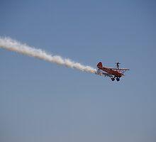 Wingwalker by Rob Howard