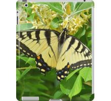 Swallowtail (iPad Case) iPad Case/Skin