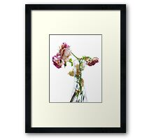 Withering Away Framed Print