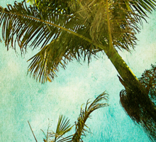 Swaying Palms Sticker