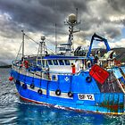 Hunting For Prawns by derekbeattie